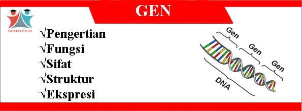 Gen: Pengertian, Fungsi, Sifat, Struktur Serta Ekspresi Gen