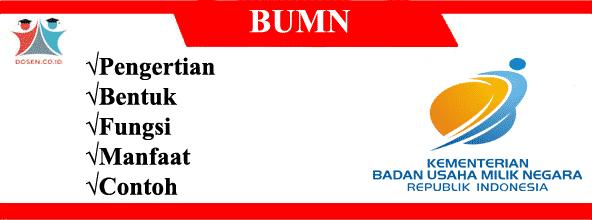 BUMN: Pengertian, Bentuk, Fungsi, Manfaat dan Contoh BUMN