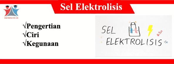 Sel Elektrolisis: Pengertian, Ciri Serta Kegunaan Sel Elektrolisis