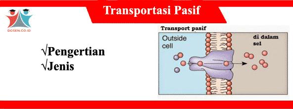 Transportasi Pasif: Pengertian dan Jenis-Jenis Transportasi Pasif