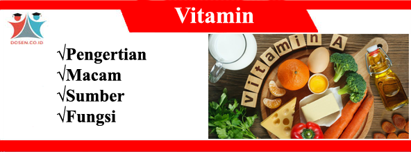 Vitamin: Pengertian, Macam-Macam, Sumber Serta Fungsi Vitamin