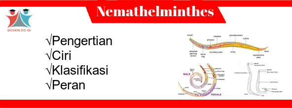 nemathelminthes