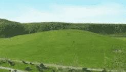 Ekosistem Stepa
