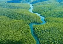 Ekosistem Sungai