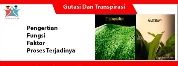 Gutasi Dan Transpirasi