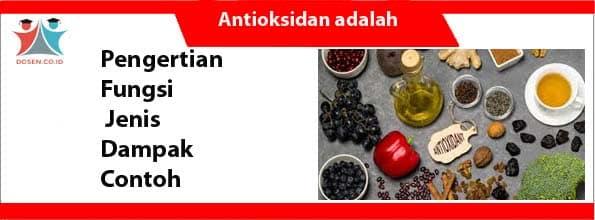 Antioksidan adalah