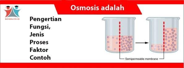Osmosis adalah