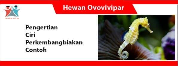 Hewan Ovovivivar