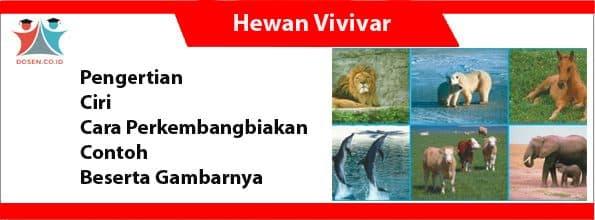Hewan Vivivar