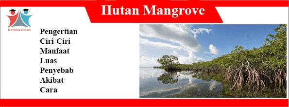 Hutan-Mangrove-adalah