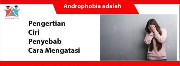 Androphobia adalah