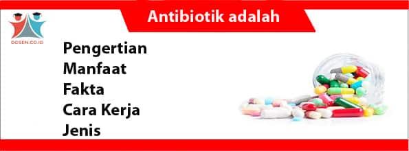 Antibiotik adalah: Pengertian, Manfaat, Fakta, Cara Kerja ...