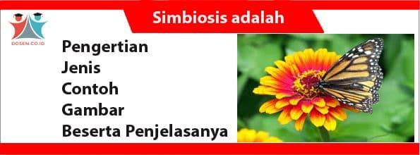 Simbiosis adalah